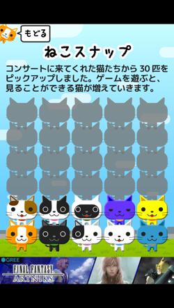 IMG 4064  mini